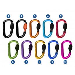 Set di 10 moschettoni, colore 7: viola, 100 kg