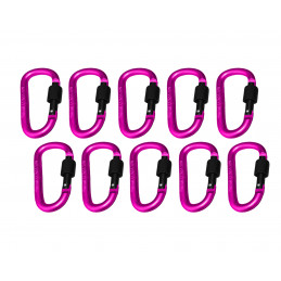 Set of 10 carabiners, color 10: pink, 100 kg