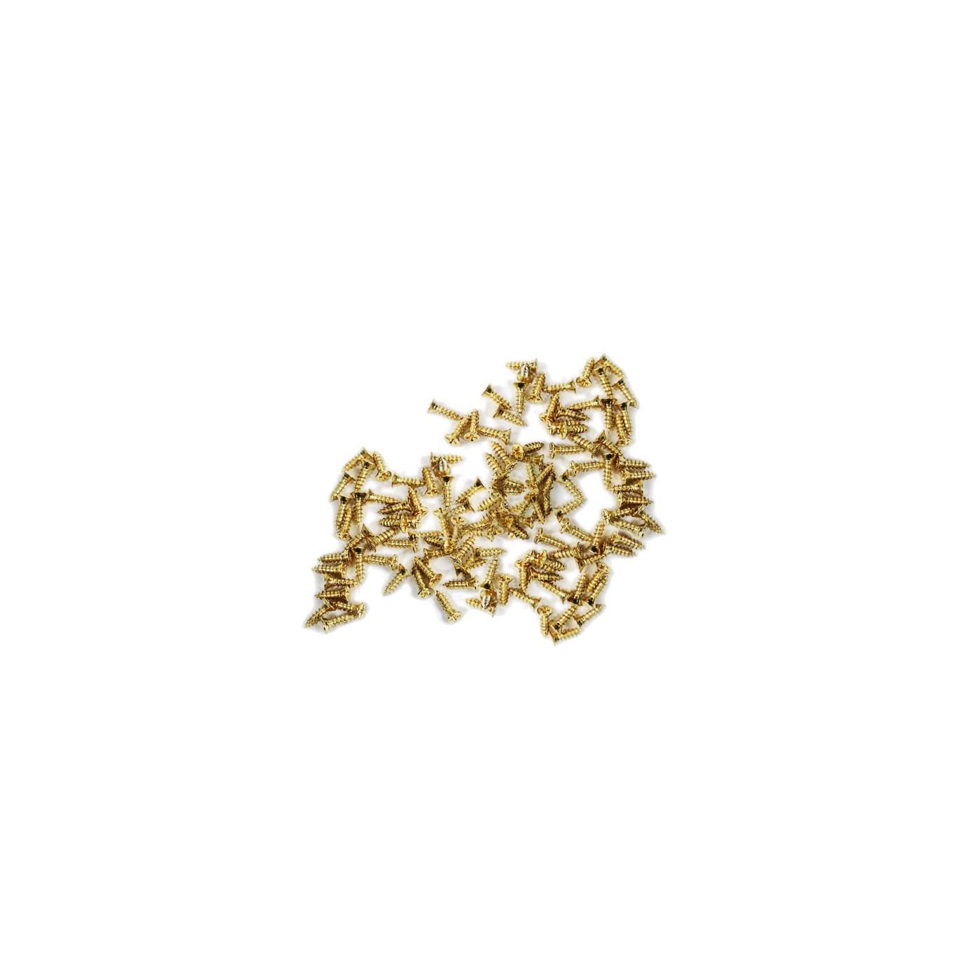 Set van 300 mini schroefjes (2.0x8 mm, verzonken, goudkleur)