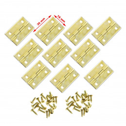 Set of 30 pieces small brass hinges (30x18 mm)