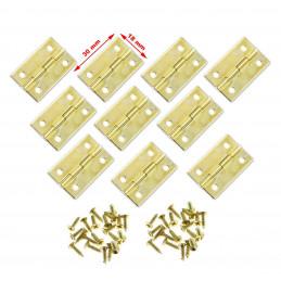 Set van 30 kleine goudkleurige scharniertjes, 30x18 mm  - 1