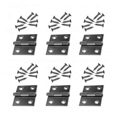Set van 6 scharniertjes (maat 1: 28x25 mm, roestvrij staal)