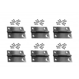 Set of 6 stainless steel hinges (size 3: 38x50 mm)