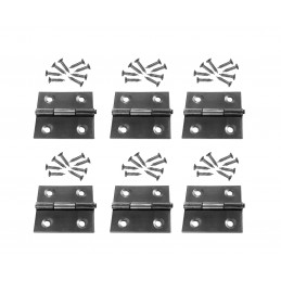 Set of 6 stainless steel hinges (size 2: 36x38 mm)