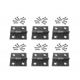 Set von 6 Edelstahlscharnieren (Größe 2: 36x38 mm)