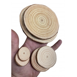 Set of 10 slices of wood (dia: 10-12 cm, thickness: 1 cm)