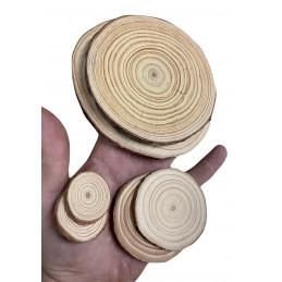 Zestaw 10 kawałków drewna (śr. 10-12 cm, grubość: 1 cm)